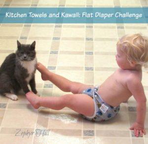 Kitchen Towels and Kawaii: Flat Diaper Challenge